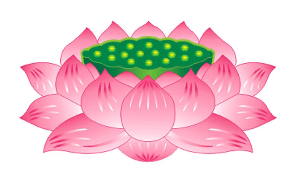 莲花头 矢量图